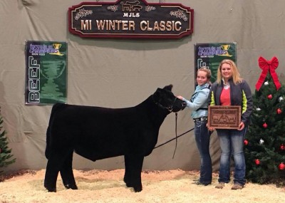 MAN AMONG BOYS X LUCY 2015 WINTER CLASSIC CHAMPION DIVISION 1 CORSSBRED STEER